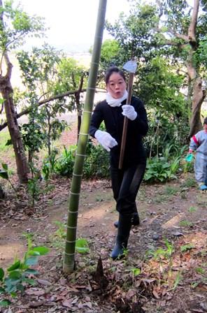旬の食材 竹の子