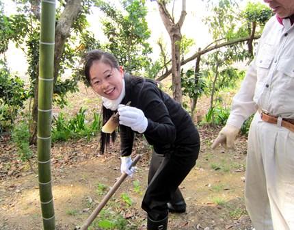 旬の食材!竹の子掘り